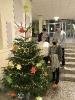 SoR Weihnachtsbaum _2
