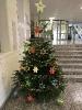 SoR Weihnachtsbaum _3